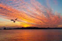 Sunset at Istanbul. Setting sun fired up the sky and Bosphorus waters Royalty Free Stock Images