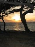 Sunset in Itaca island. Sunset on a beach under the trees on Itaca island, Greece, Mediterranean Sea Stock Photo