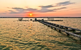 Sunset Jetty Stock Photography