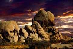 Sunset in Joshua Tree Nat Park royalty free stock images