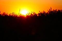 Sunset in Kagalnik. Beautiful sun and nature in Russia Stock Photos