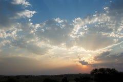 Sunset in Kalahari. Spectacular sunset in Kalahari with silhouette trees Stock Photo