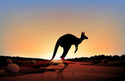 A sunset with a kangaroo Stock Images