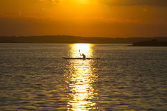 Sunset kayaking. Man in kayak sailing in sunset Stock Photography