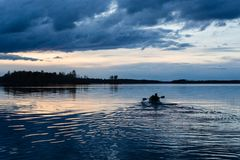 Sunset kayaking at lake Royalty Free Stock Image