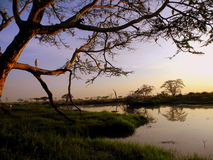 Sunset - Kenya. Lake view at sunset during safari Stock Images