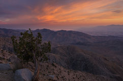 Sunset Keys View, Joshua Tree National Park 2 Stock Photos