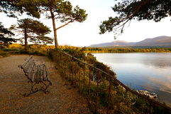 Sunset killarney. Sunset by the lake in killarney Royalty Free Stock Image