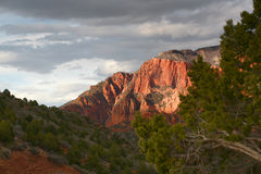 Sunset in Kolob -  Zion National park Royalty Free Stock Image