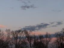 sunset kosmicznymi tekstu twojego drzewa Obrazy Stock
