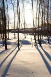 sunset krajobrazowa zimy. Zdjęcie Royalty Free