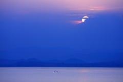 Sunset at Kraseaw Dam,thailand. The fisherman working his job in Kraseaw Dam Royalty Free Stock Photo