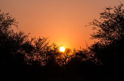 Sunset in Kruger Park South Africa Stock Photo