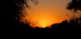 Sunset at Kruger park South Africa