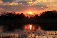 Sunset at Kwando River Royalty Free Stock Photo