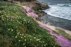 San Diego California Coastline in Spring. Sunset in La Jolla California USA stock photography