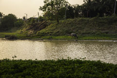 Sunset lagoon Royalty Free Stock Photography
