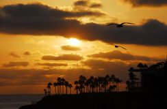Sunset on Laguna beach Royalty Free Stock Image