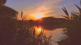Sunset. On the lake Stock Image