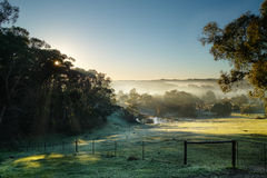 winter morning, Adelaide hills Royalty Free Stock Images