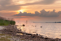 Sunset at lake Bodensee Royalty Free Stock Photo