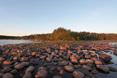 Sunset on the lake. Sunset on the Ladoga lake Royalty Free Stock Photos