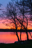 Sunset on a lake landscape with trees Royalty Free Stock Photos