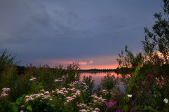 Sunset on lake and many wildflowers Stock Photo