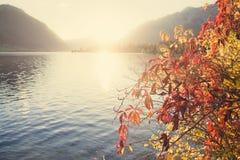 Sunset lake Stock Images