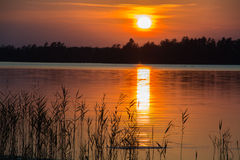 Sunset by a lake. In South of Sweden Royalty Free Stock Image