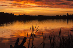 Sunset on the lake. Summer sunset on the lake Royalty Free Stock Photo