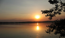 Sunset. On a lake, a sun is reflected in water, branches of trees Royalty Free Stock Photos