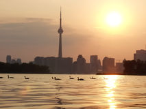 Sunset Lake view of downtown Toronto Stock Photo