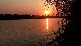 Sunset at the lake. Water reflections. Action at sunset. Real time stock video footage