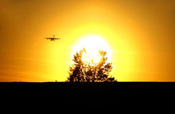 Sunset and landing of aircraft Stock Photos