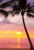 Sunset Landscape Stock Photos