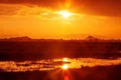 Sunset landscape at fields Royalty Free Stock Photo