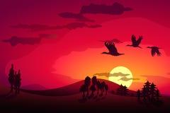 Sunset landscape and flying storks. Background Stock Photography