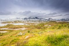 Hardangervidda mountain plateau in Norway Stock Images