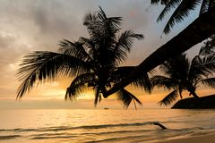 Sunset landscape on Koh Kood. Summer landscape on tropical koh Kood island in Thailand. Colorful sunset panorama taken on Klong Chao Stock Photos