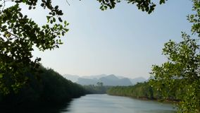 Sunset landscape of the river in mangrove forest against the mountains. The calm waters of the river reflect the blue sky in the evening with the green trees in stock video footage