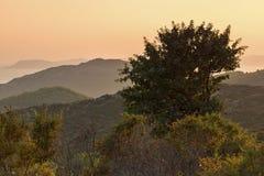 Sunset landscape of Sithonia peninsula, Chalkidiki, Central Macedonia, Greece. Amazing sunset landscape of Sithonia peninsula, Chalkidiki, Central Macedonia royalty free stock photo