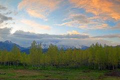 Sunset landscape in the Utah mountains. Royalty Free Stock Image