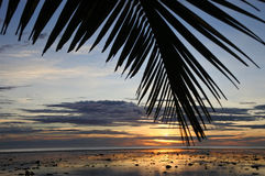 Sunset landscape view of the Coral Coast Fiji Stock Photography