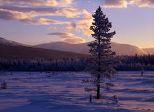 Sunset landscape in winter Stock Image