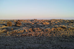 Sunset on Lava field in South Iceland Royalty Free Stock Photography