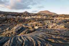 Sunset at lava formation landscape, La Restinga, El Hierro, Canary Islands, Spain. Sunset at lava formation landscape with bushes, La Restinga, El Hierro, Canary stock photos