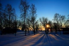 Sunset through leafless trees in winter. Sun rays through leafless trees in winter stock image