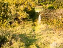 Sunset light over a country grass land path scene with rusty old stock photography