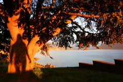 Sunset light over Lake Geneva, Switzerland, Europe Royalty Free Stock Photo